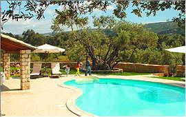 Swimmingpool und alte Bäume